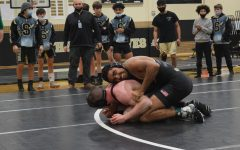 Wrestling Wins Region